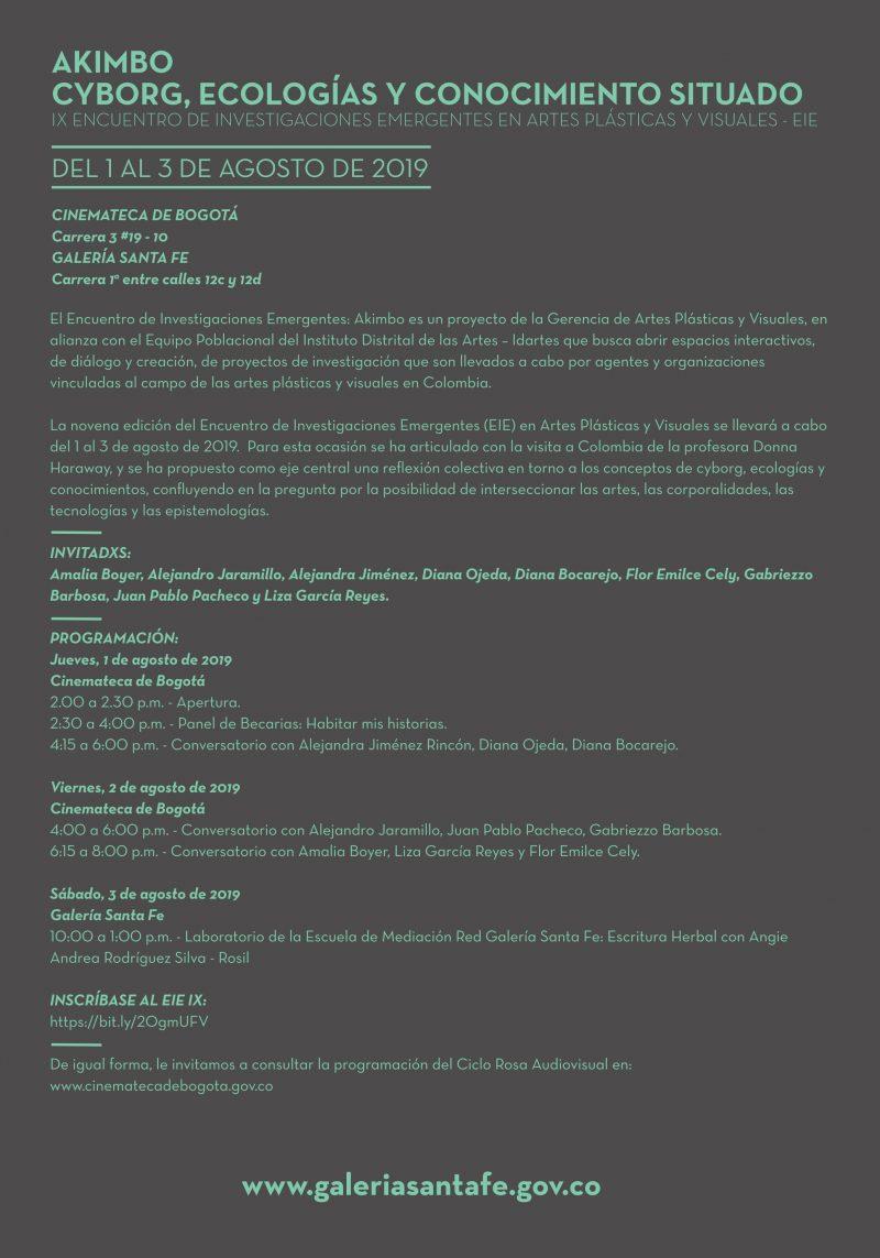 IX Encuentro de Investigaciones Emergentes en Artes Plasticas y Visuales