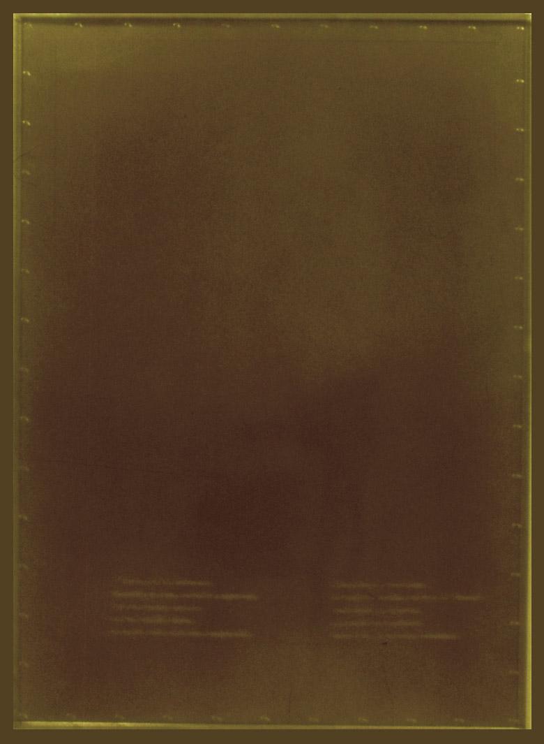 Una jaula fue a buscar un pájaro (1997). Galería Santa Fe. Instalación. Detalle: Soldado