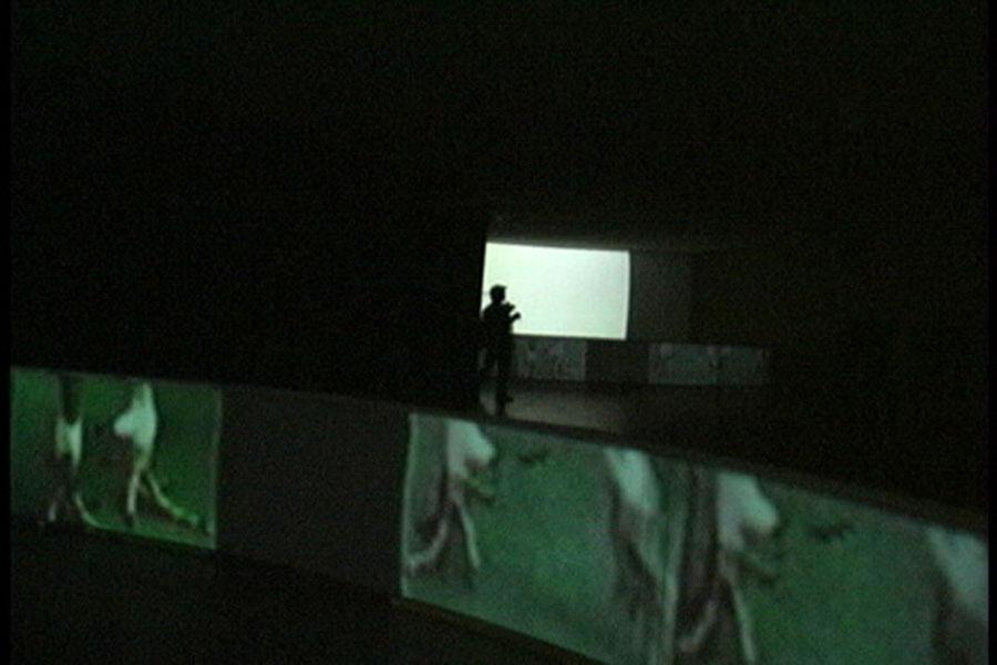 Exhausto aún puede pelear (2000). Galería Santa Fe. Video instalación.